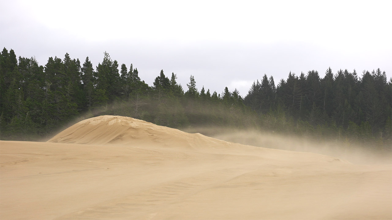 Immense gusts of wind errode the dunes in Winchester, Oregon.